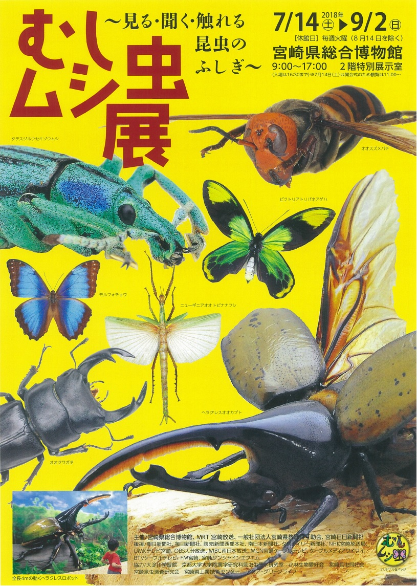 http://www.miyazaki-kyogo.or.jp/publiculture/art/mushimushi/mushimushi.jpg