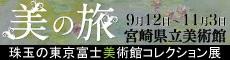 https://www.miyazaki-kyogo.or.jp/publiculture/art/trip/fujibimini.jpg